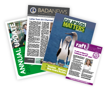 A selection of newsletters